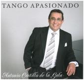 Antonio Castillo De La Gala - I Gave It All