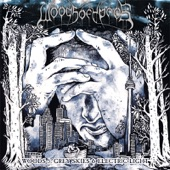 Woods of Ypres - Modern Life Architecture