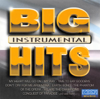 Big Hits Instrumental - Acoustic Sound Orchestra