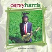 Corey Harris - Diddy Wah Diddy