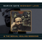 [Download] Sexual Healing MP3