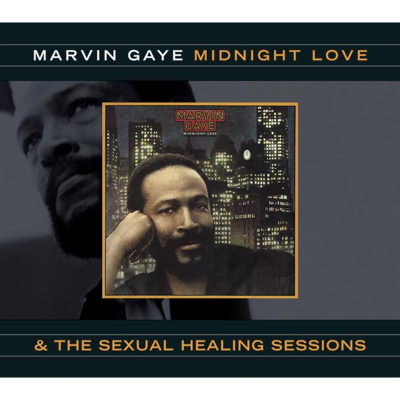 Sexual Healing - Marvin Gaye song