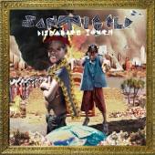 Santigold - Disparate Youth