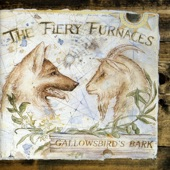 The Fiery Furnaces - Worry Worry