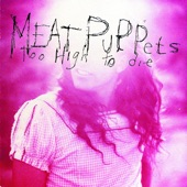 Meat Puppets - Backwater
