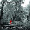 Steve Walsh - After artwork