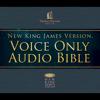Thomas Nelson, Inc. - Voice Only Audio Bible - New King James Version, NKJV: Complete Bible (Unabridged) artwork