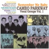 Remember Me Baby - Cameo Parkway Vocal Groups, Vol. 1