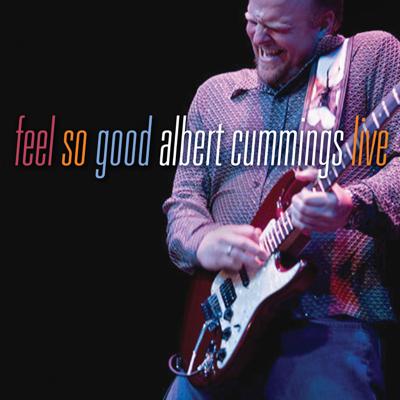 Hoochie Coochie Man / Dixie Chicken Medley - Albert Cummings song