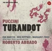 Turandot - Opera in three Acts, Act I: Non piangere, Liù! artwork