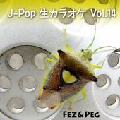 J-POP生カラオケ Vol. 14 - EP
