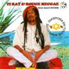 Ti Rat & Rouge Reggae - Chagos artwork