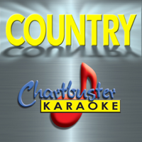 Chartbuster Karaoke - You're Gonna Miss This (Karaoke Track in the Style of Trace Adkins) artwork