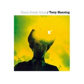 Terry Manning - Trashy Dog