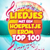 Liedjes Met Een Hoepeltje Erom Top 100