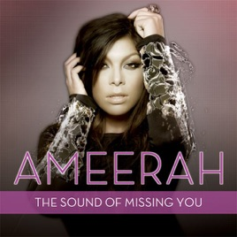Wildboyz ameerah the sound of missing you download mp3.