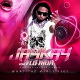 What The Girls Like (Hard Dance Alliance Mix) (feat. Flo-Rida) - Single
