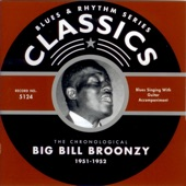 Big Bill Broonzy - Black Brown and White (02-05-52)