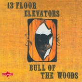 13th Floor Elevators - Dr. Doom