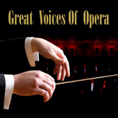 Great Voices Of Opera