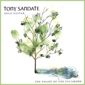 Tony Sandate - Distractions