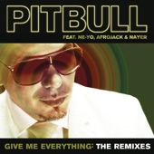 Give Me Everything (The Remixes) [feat. Ne-Yo, Afrojack & Nayer]