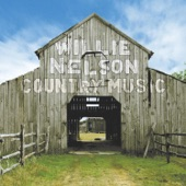 Willie Nelson - Nobody's Fault But Mine