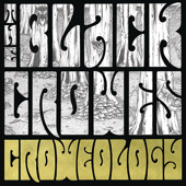 Welcome to the Good Times - The Black Crowes