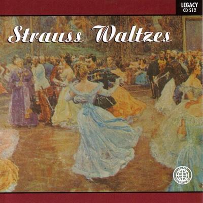 Blue Danube Waltz - Vienna Philharmonic Orchestra song