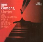 Piano Sonata No. 2 in B flat minor, Op. 36 (1931 version): II. Non allegro - Lento - Piu mosso artwork