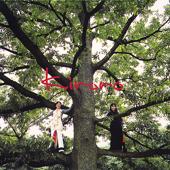 Nagai Aida -Kiroro No Mori-