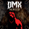 DMX - What These Bitches Want (Re-Recorded) artwork