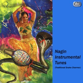 ‎Nagin Instrumental Tunes (Traditional Snake Charmer) by Various Indian  Instrumentalists
