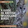 Stephen Moss - A Guide to British Woodland Birds (Unabridged) portada