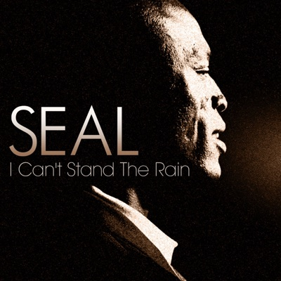 I Can't Stand the Rain - Single - Seal