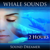 Whale Sounds (2 Hours)-Sound Dreamer