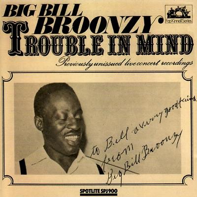 Trouble In Mind (Live) - Big Bill Broonzy