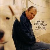 Gary Primich - You Got Me