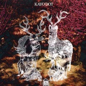 Kayo Dot - Right Hand Is the One I Want