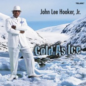 John Lee Hooker Jr. - Cold As Ice