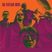 The Electric Mess - Cause You Think You're a Star