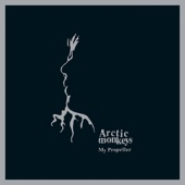 Arctic Monkeys - Joining The Dots