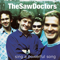 The Saw Doctors - N17 artwork