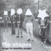 The Shapes - Airline Disaster
