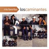 LOS CAMINANTES - PARA QUE QUIERES VOLVER