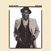 Muddy Waters - Bus Driver