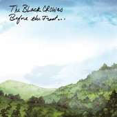 The Black Crowes - Aimless Peacock
