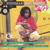 Bushman - Fire Pon A Deadas