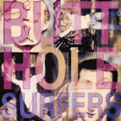 Butthole Surfers - The Hurdy Gurdy Man