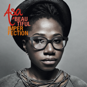 Beautiful Imperfection-Aṣa